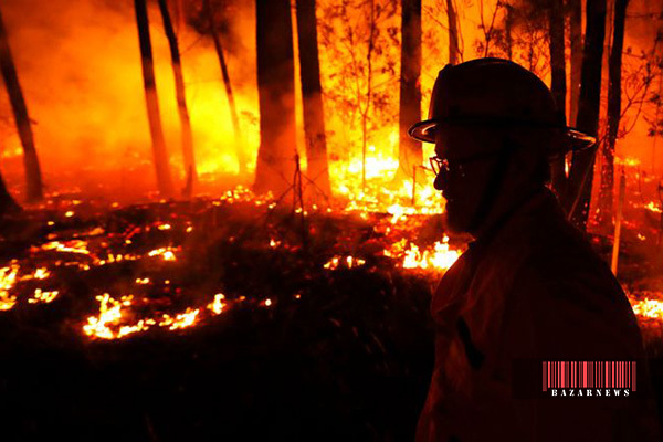 ۴۸۰ میلیون حیوان از بین رفته اند / برآورد ۷۰ میلیارد دلاری خسارت آتش سوزی در استرالیا